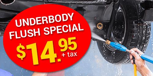 Underbody Flush Special